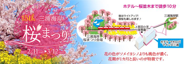 桜祭り地域情報画像