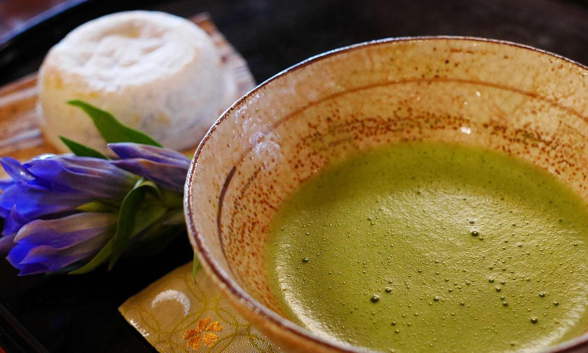 【マツコの知らない世界】7000食以上の中から絶品抹茶スィーツを紹介