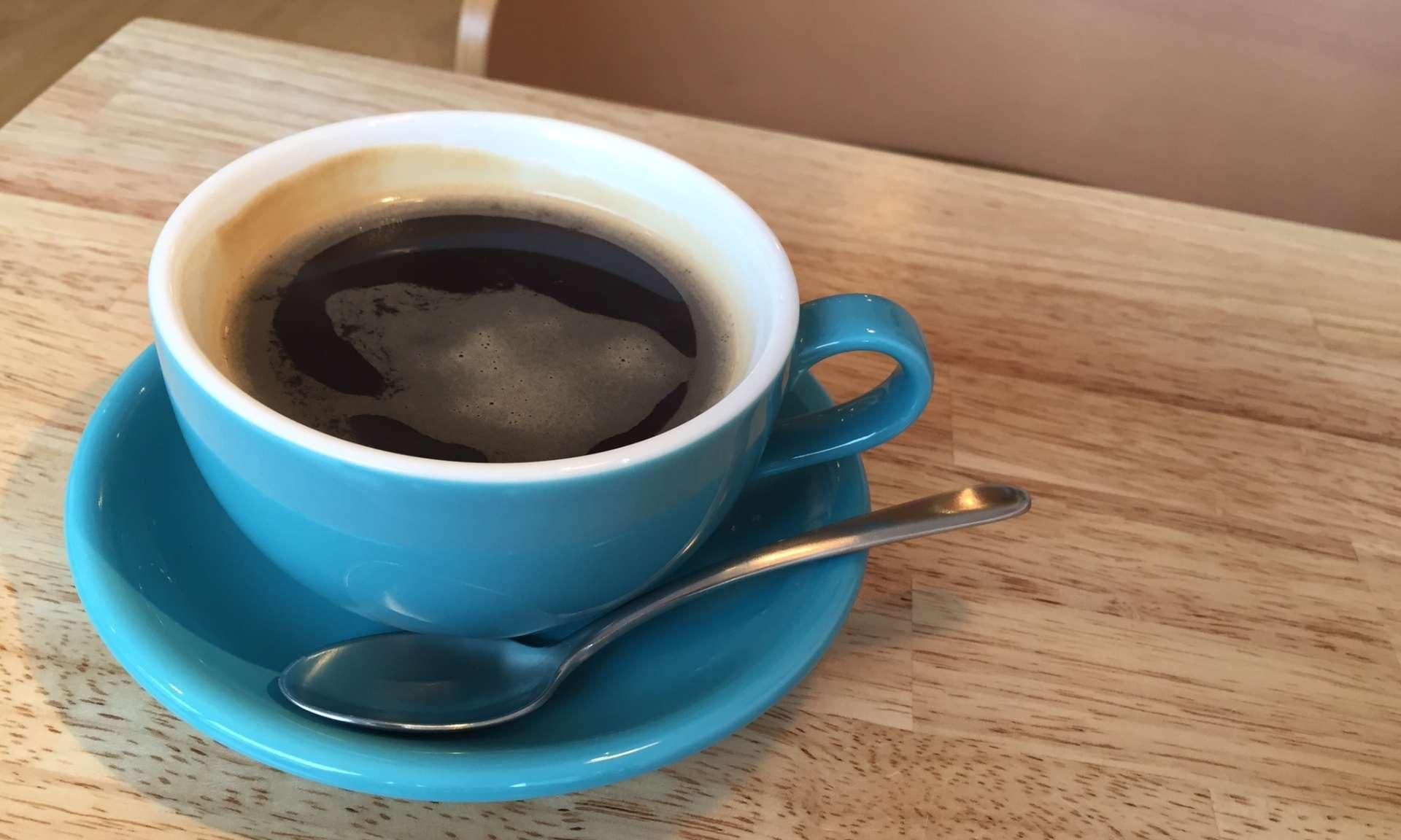永作博美さんのカフェ「ヨダかカフェ」 ご本人がいる?|移転先やカフェメニューも紹介